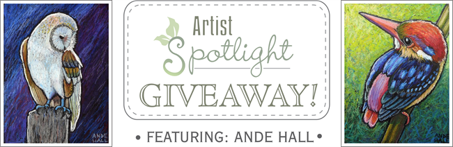 ande hall, bird paintings, oil pastel birds, art giveaway