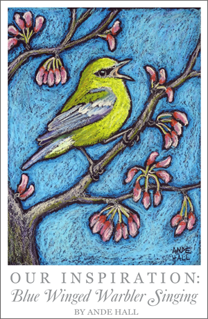 ande hall, bird paintings, oil pastel birds, embroidery design