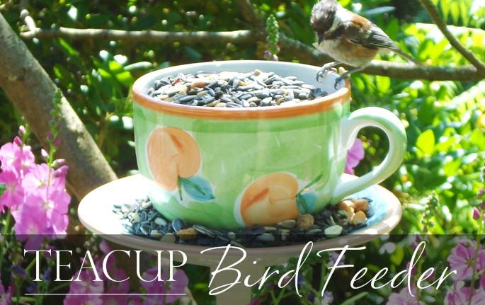 Easy to make bird feeder teacup