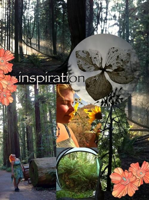 tamaras-inspiration