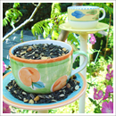 Easy to make bird feeder teacup
