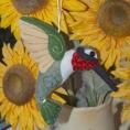 AllyGardner-Hummingbird550